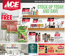 Willows Ace Hardware store specials