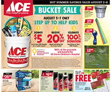 American River Ace Hardware Specials